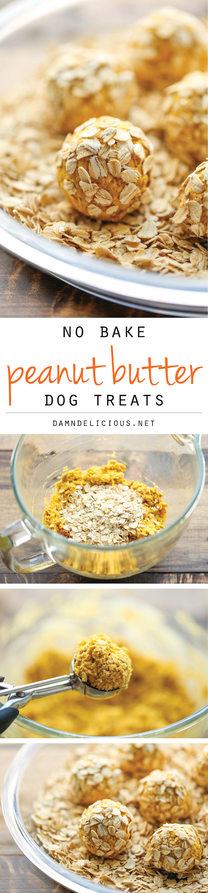 No Bake Peanut Butter Dog Treats Damn Delicious