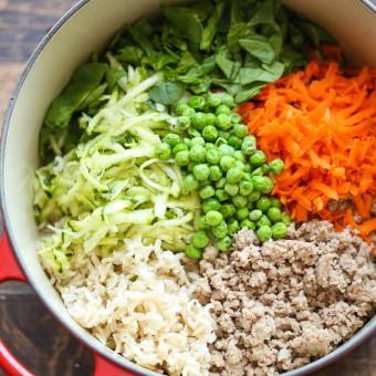 Diy homemade dog food damn delicious diy homemade dog food forumfinder Image collections