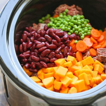 Easy crockpot dog food damn delicious easy crockpot dog food forumfinder Image collections