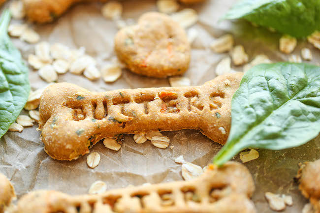 Spinach Carrot And Zucchini Dog Treats Diy That Are Nutritious Healthy
