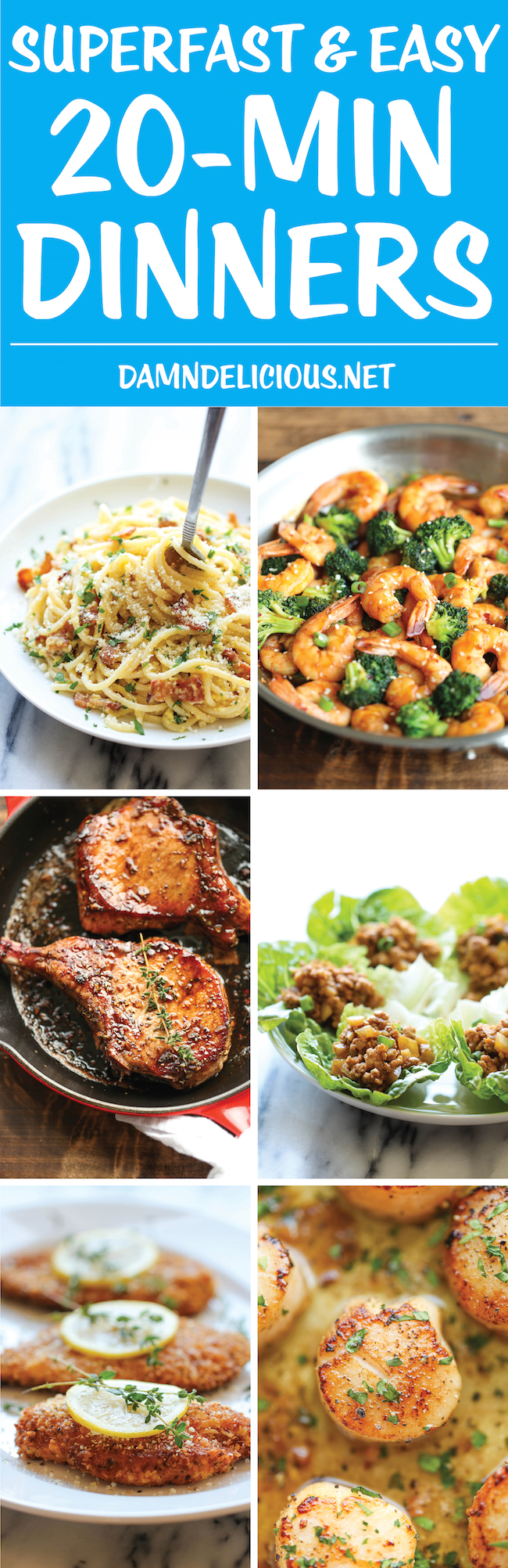 10 Superfast And Easy 20 Minute Dinners Damn Delicious