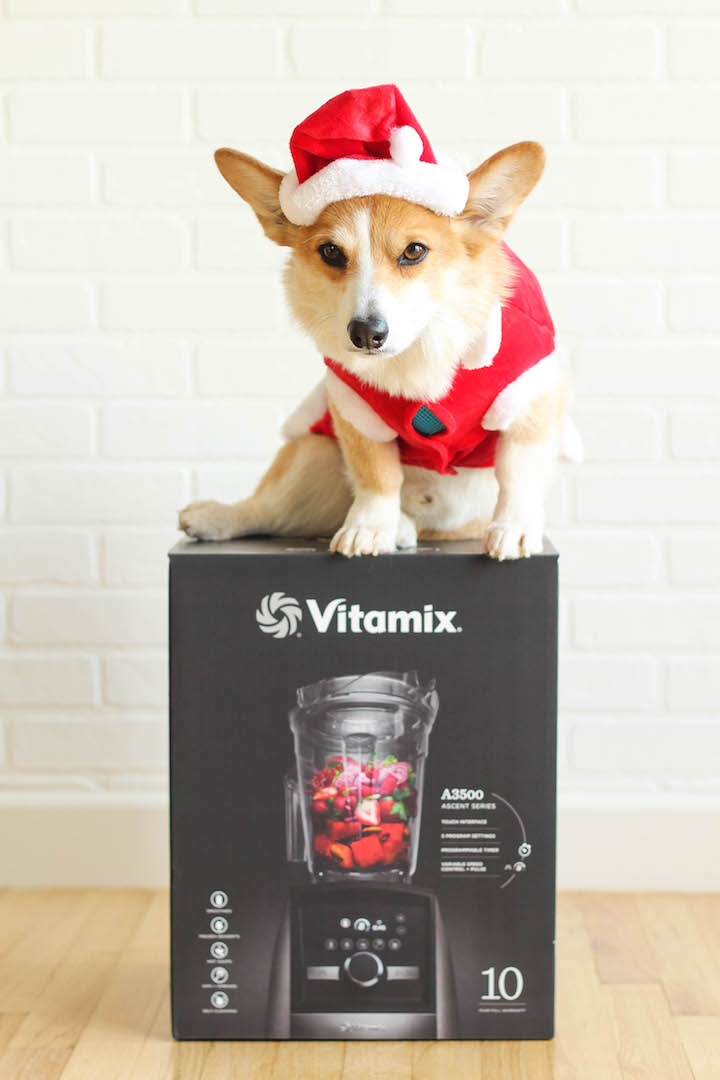 Vitamix A3500 Ascent Series Giveaway Damn Delicious