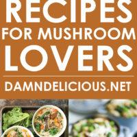 10 Best Mushroom Recipes for Mushroom Lovers