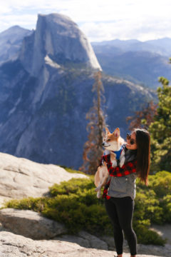 Traveling to Yosemite with a Dog