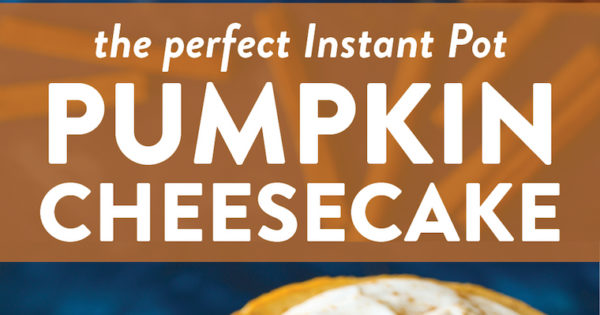 Instant Pot Pumpkin Cheesecake Damn Delicious